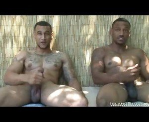 Island Studs King Brothers 2